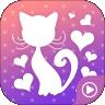 >猫小姐直播app官网